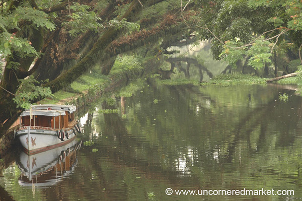 Backwater Mist: Alleppey, India