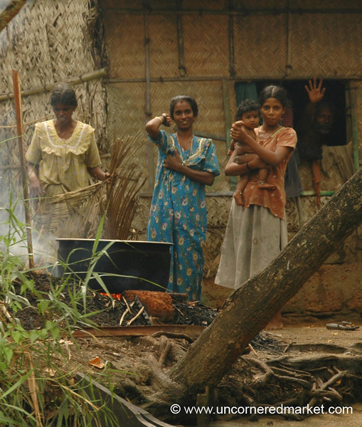Living Near the Water - Kerala Backwaters, India