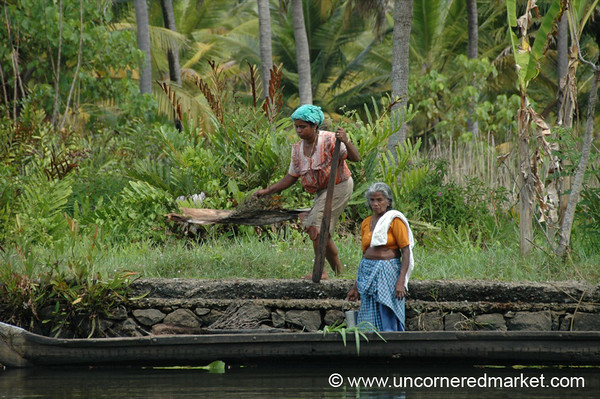 Working Together - Kerela Backwaters, India