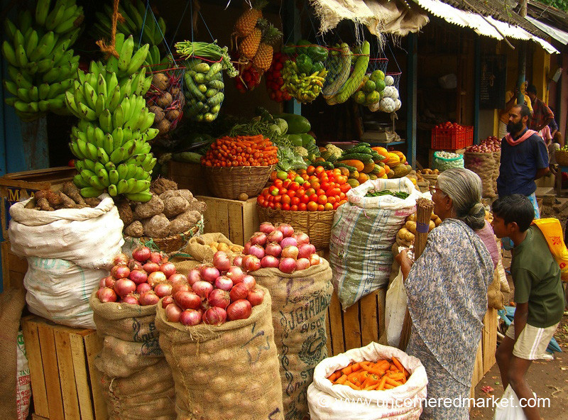 Time to Choose - Kollam, India