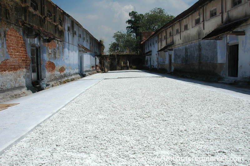 A Sea of Dried Ginger - Kochi, India