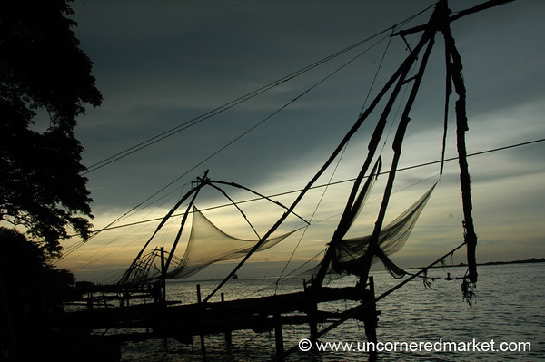 Traditional Fishing in Kochi - Kerela, India