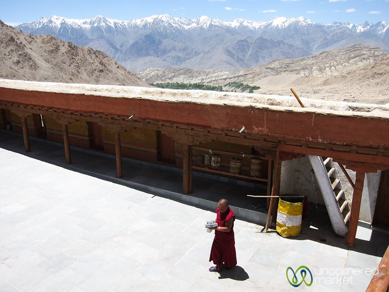 Likir Monastery, Buddhist Monk in Courtyard - Ladakh, India