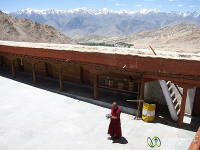 Likir Monastery, Buddhist Monk in Courtyard - Ladakh, India