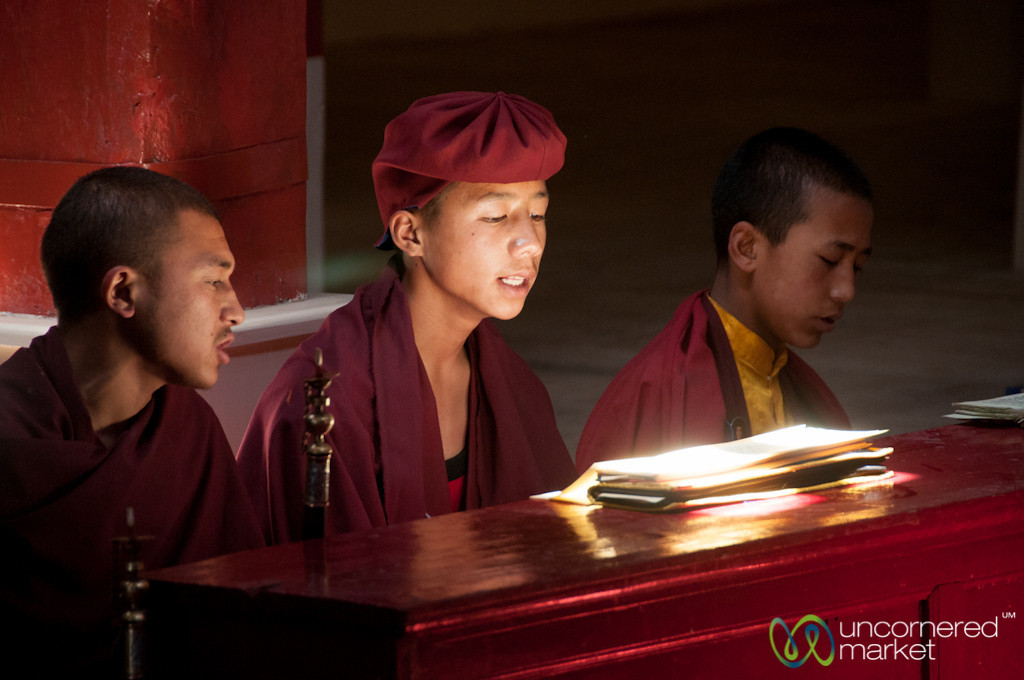 Novice Buddhist Monks at Hemis Monastery, Ladakh