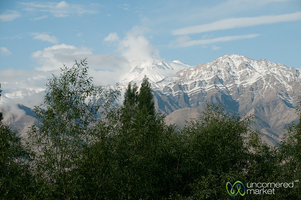 Snow-Capped Mountain Views from Hotel in Leh, Ladakh