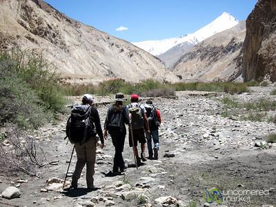 Markha Valley Trek, Day 4 - Markha to Hangar, Ladakh