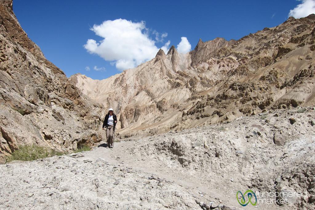 Ladakh Trekking, High Desert - Markha Valley Trek
