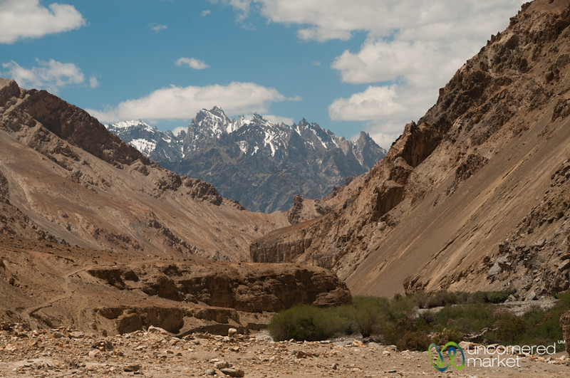 Mountain Views and Canyons - Markha Valley Trek in Ladakh, India