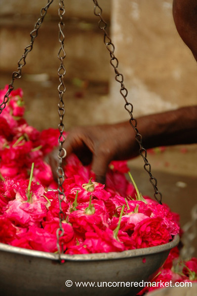 Flowers in the Balance: Madurai, India