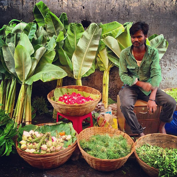 The palm peddler of Dadar flower market, Mumbai