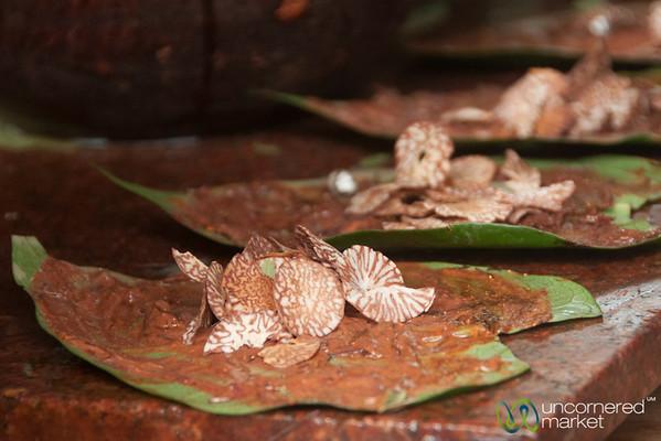 Paan in the Making, Beetel Nut Slivers - Mumbai, India