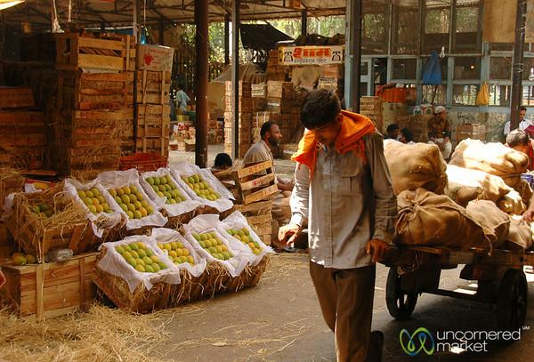 Pulling a Heavy Load - Crawford Market in Mumbai, India