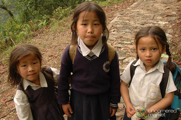 Walking Home Together - Sikkim