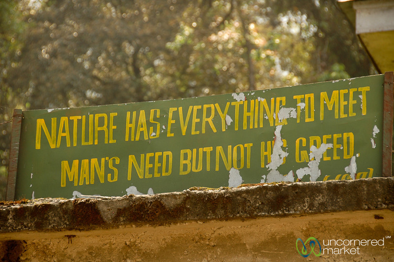 Wise Words About Nature - Lake Khecheopalri, Sikkim