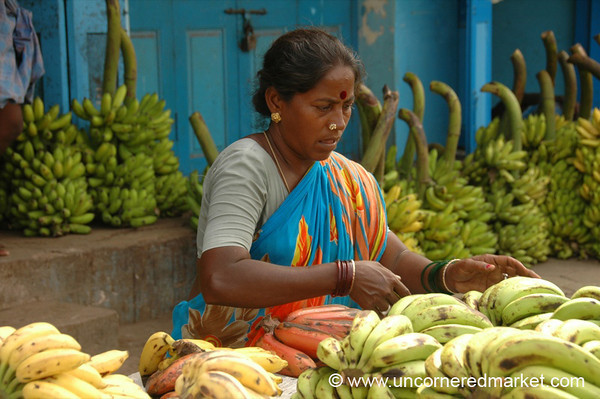 Carefully Tending Her Bananas - Chennai, India