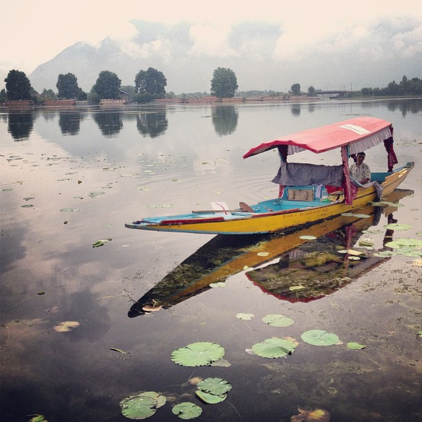 Wake-up call, misty morning view from our houseboat. Nagin Lake, Srinagar #Kashmir