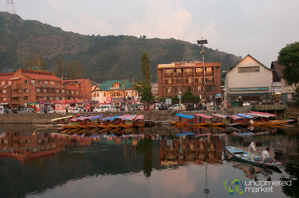 Late Afternoon Reflections on Dal Lake - Srinagar, Kashmir, India