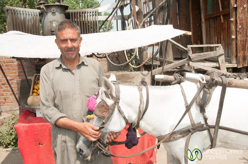 Kashmir Man with Horse - Srinagar, Kashmir