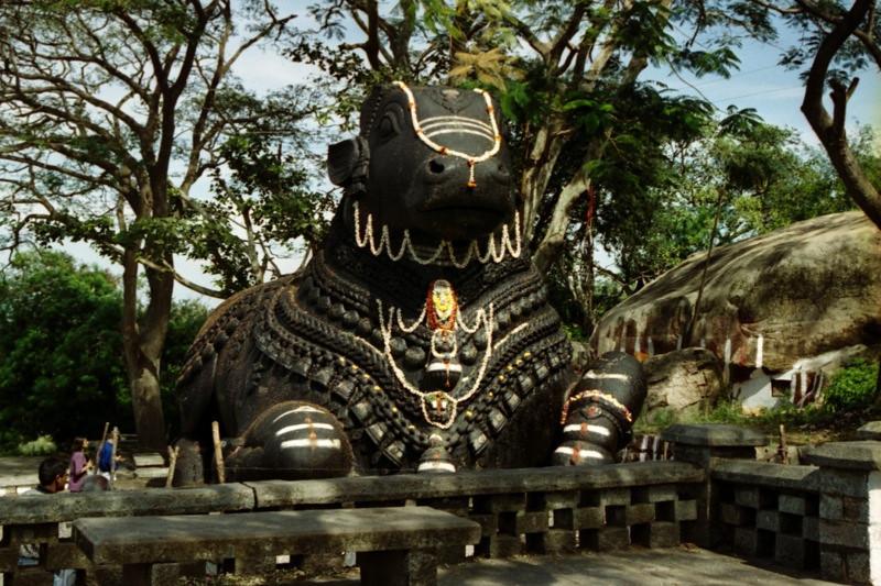 Nandi Bull, Chamundi Hill - Mysore, India