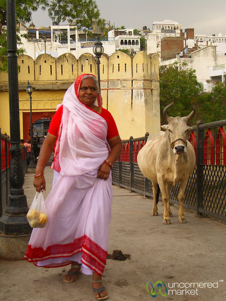 Walking Home in Udaipur, India