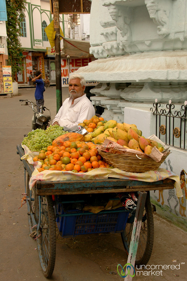 Fruit Stand on the Streets of Udaipur, India