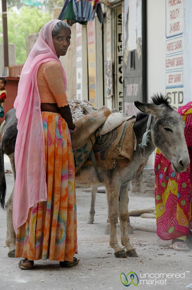 Taking Care of Donkey - Bikaner, India
