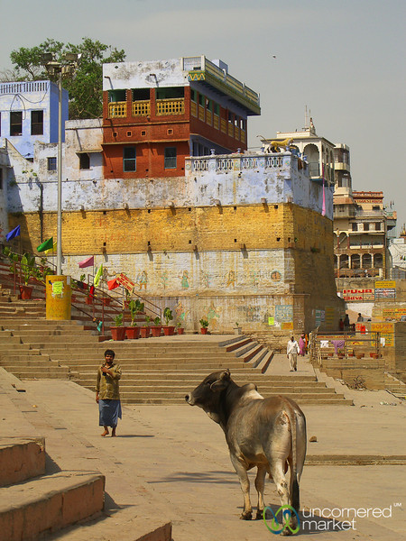 Ghats of Varanasi - India