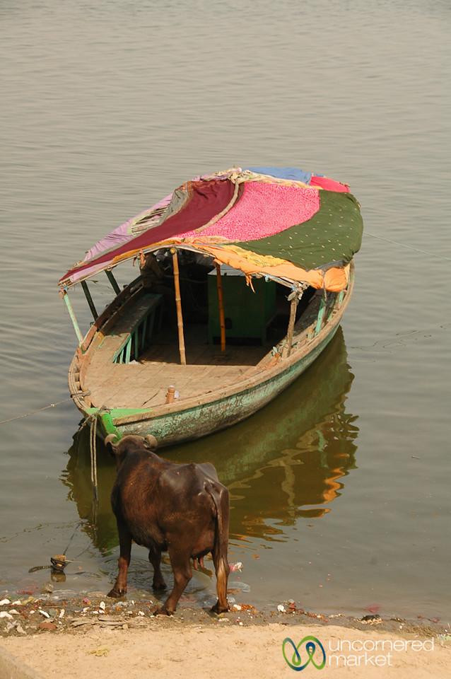 Colorful Boat Tied Up Along the River - Varanasi, India
