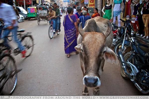Traffic Jam In Varanasi India