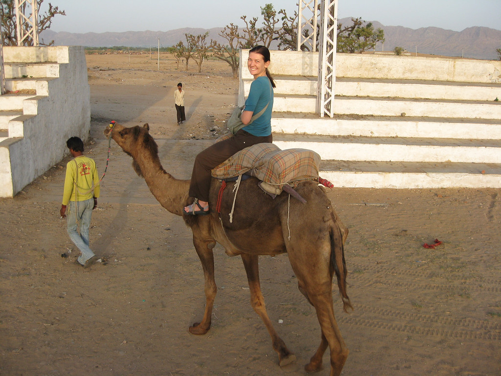 camel adventures in Pushkar