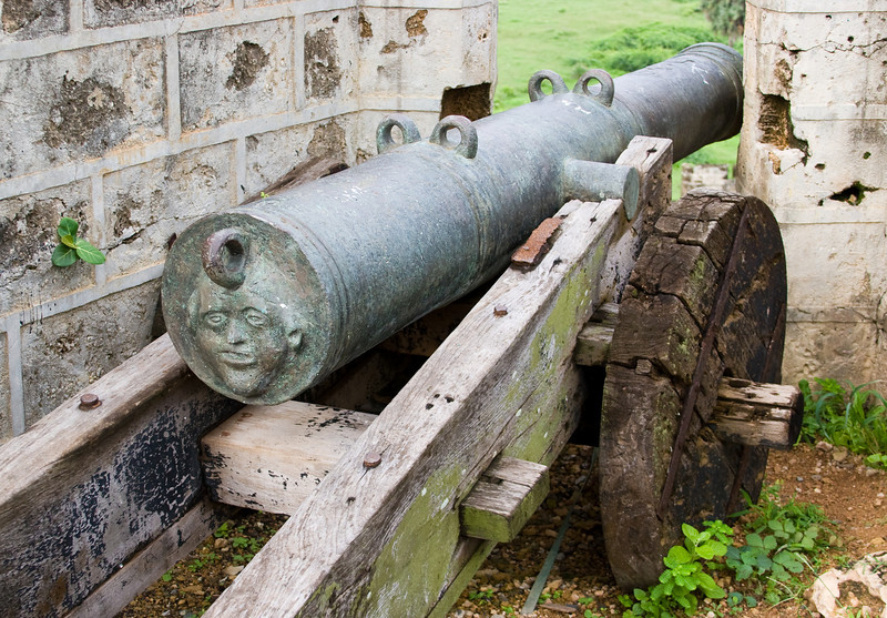 There were a bunch of near museum-quality cannons left in situ around the Portuguese fort.<br /> <br /> This one with its face was a personal favorite.<br /> <br /> Location: Diu, India<br /> <br /> Lens used: 28-135mm f3.5-5.6 IS