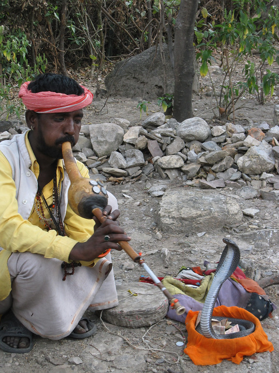 snake charmer on the banks of the Ganges River in Rishikesh