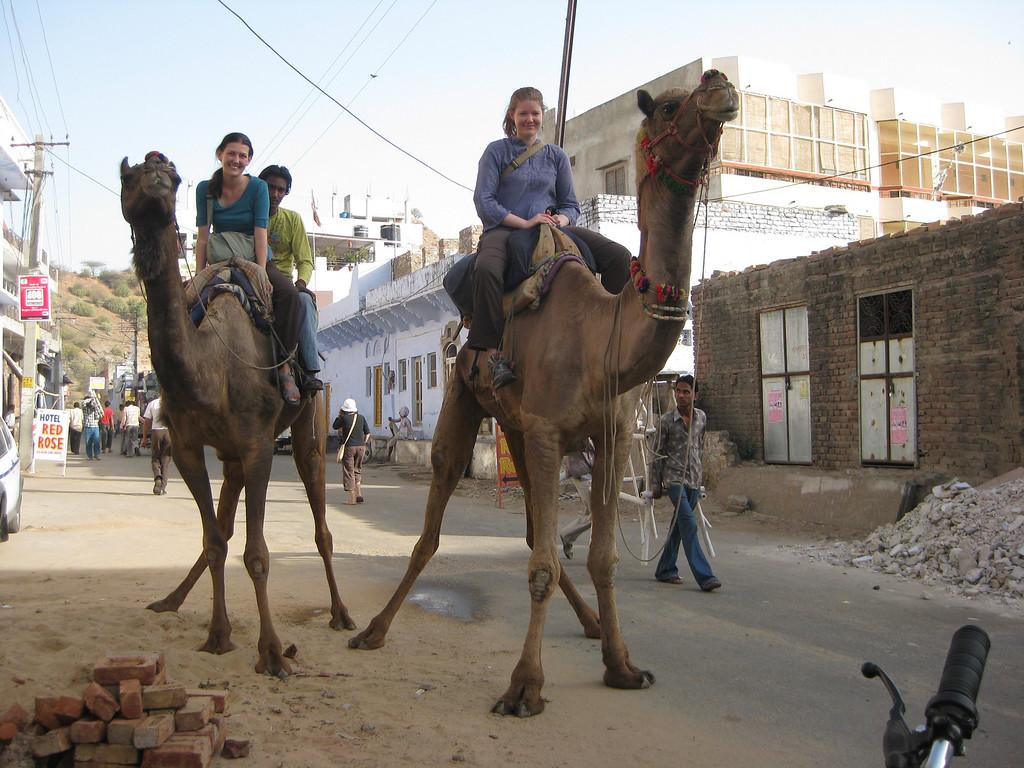 camel safari in india