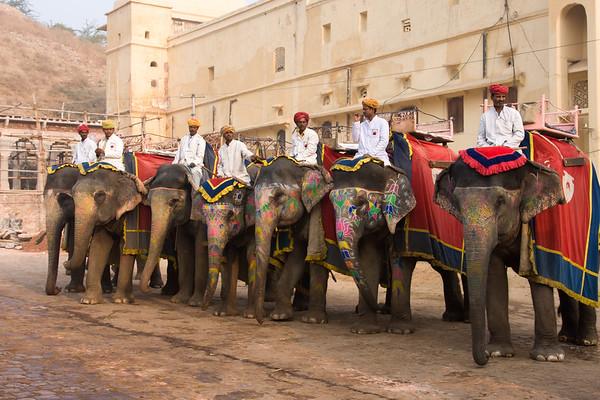 Jaipur, Day 8