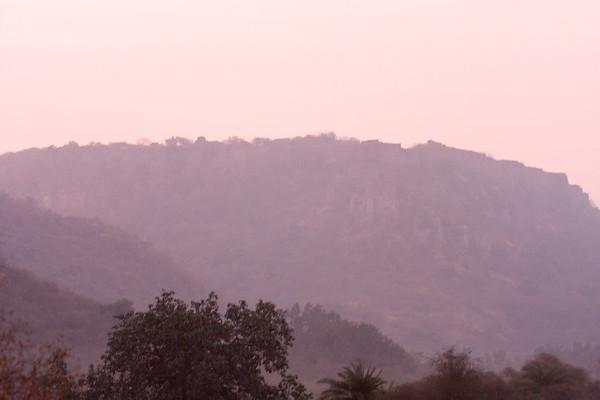 Ranthambhore National Park #1