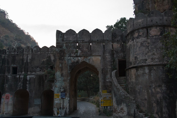Ranthambhore National Park #2