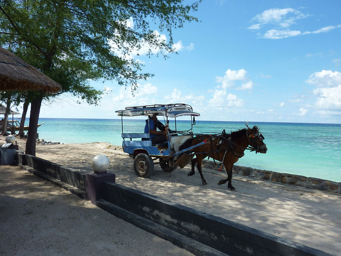 Horse and cart, Gili Trawangan – Indonesia