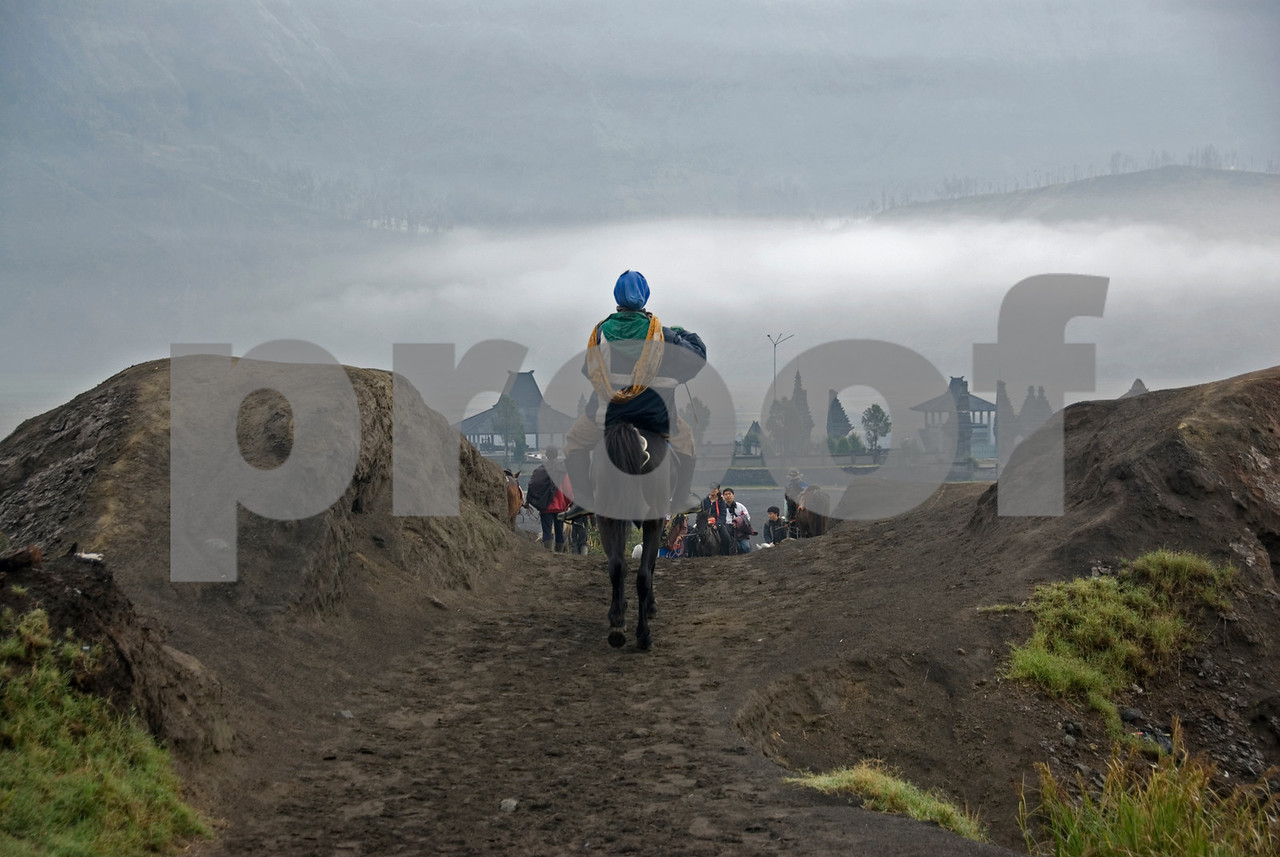 Man riding a horse on the way to Mount Bromo in Java, Indonesia