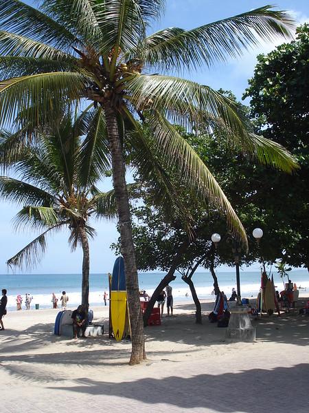 Kuta Beach Trees, Kuta Bali - Indonesia