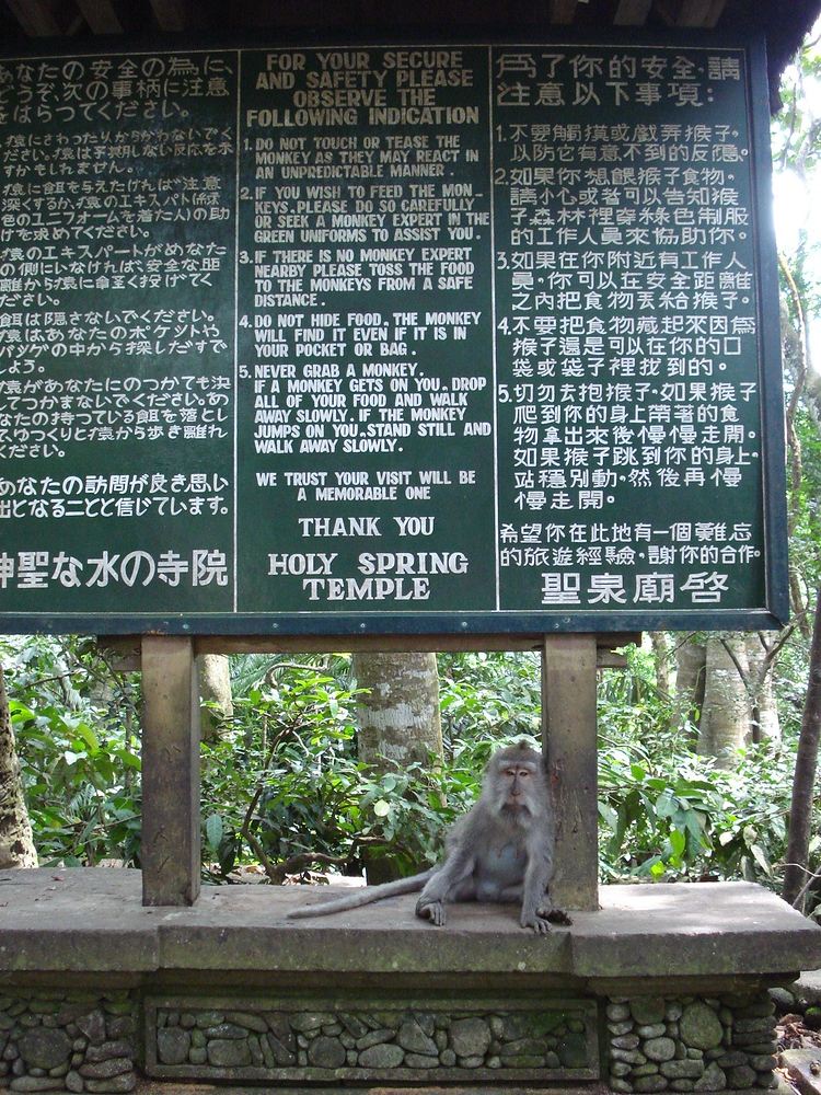 Monkey Forest Rules