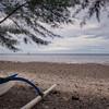 Probolinggo Coast Fi#4B913C