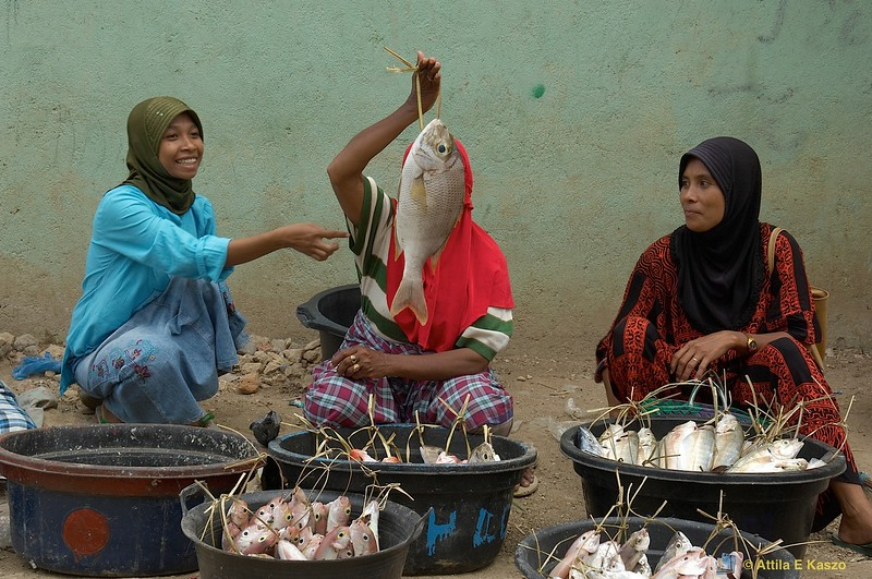 Fish Markets<br /> <br /> Labuan Bajo, Flores, Indonesia