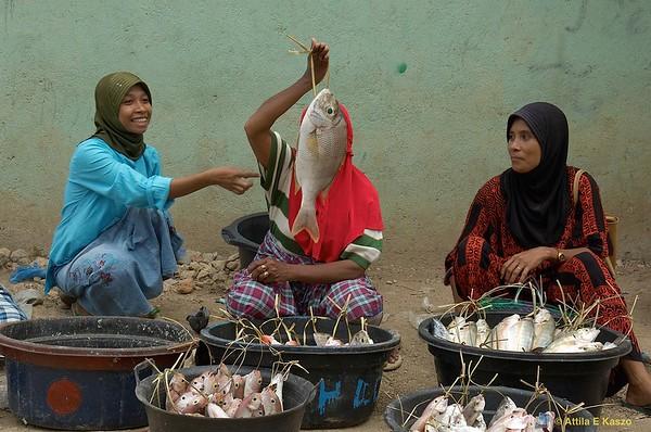 Fish Markets  Labuan Bajo, Flores, Indonesia