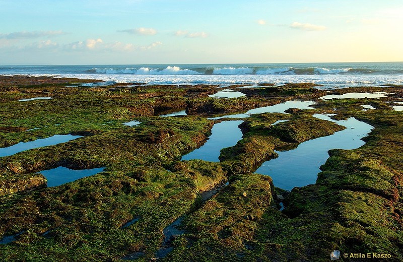 Landscape / Seascape<br /> Tanah-Lot, Bali, Indonesia
