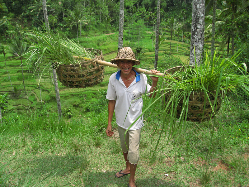 A friendly farmer tending to his fields in Bali, Indonesia.  Those are rice paddies in the background.