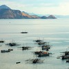 Harbour / Fishing Boats<br /> Labuan Bajo, Flores, Indonesia
