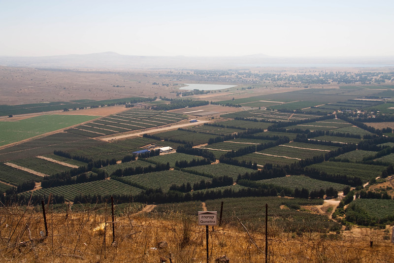 View from Mt. Bental.  The border is where the green turns to brown.