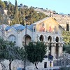 The Mount of Olives - Gethsemane