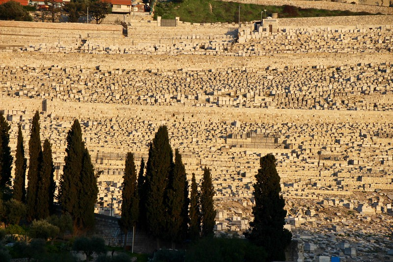 The Mount of Olives